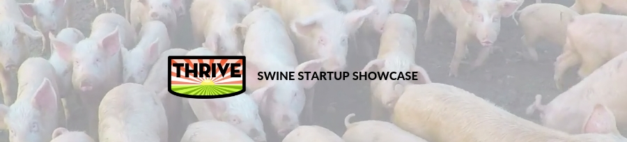At The Swine Innovation Summit
