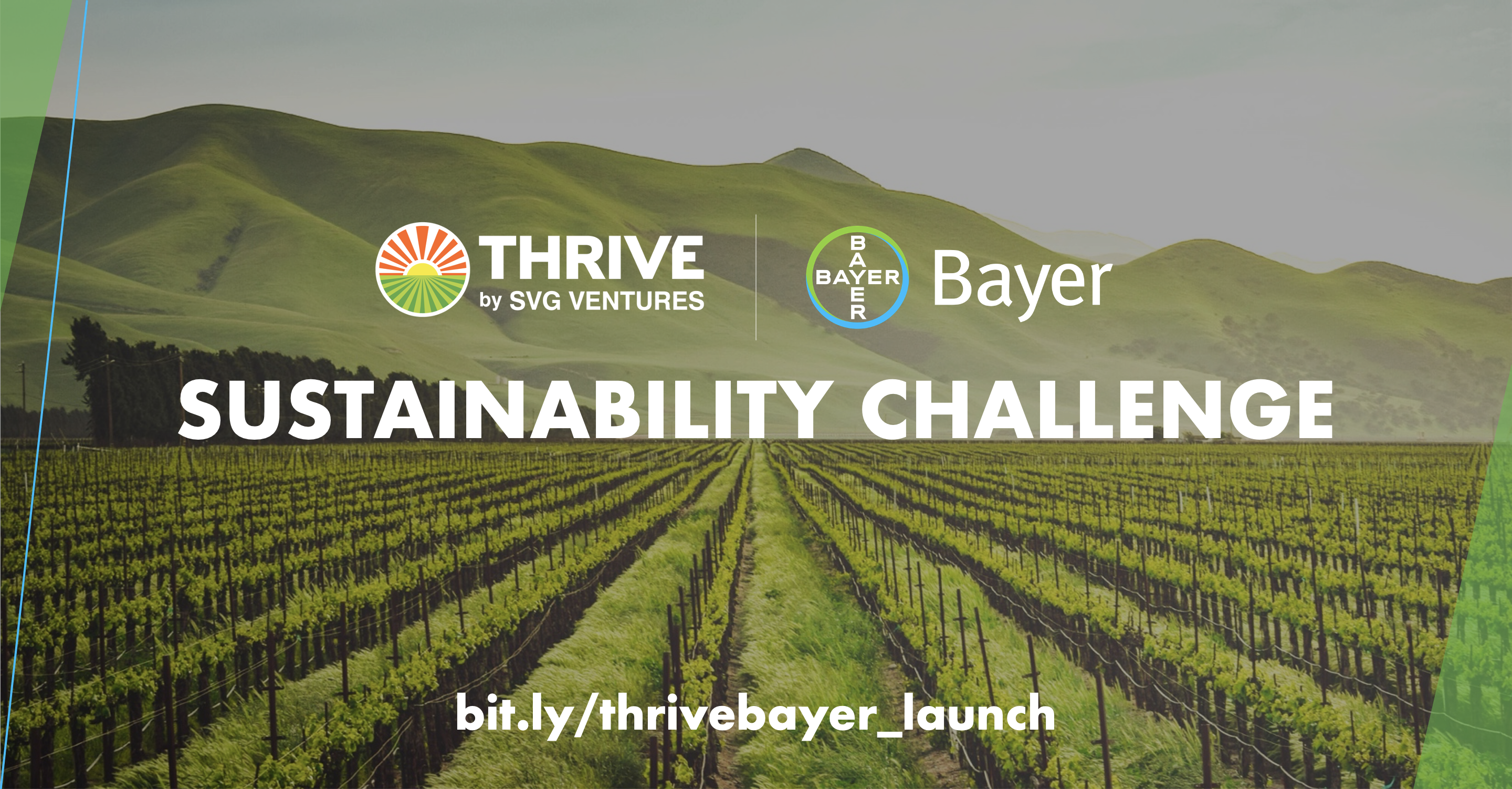 SVG Ventures | THRIVE and Bayer partner to tackle agriculture's grand challenge